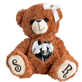 Proposal Teddy Bear | Personalized Photo Teddy Bears | Voice and Image Gift Bears | Cuddlebuddys