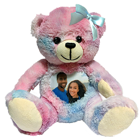 This is an image of a Memory Bear Cuddlebuddys bear.