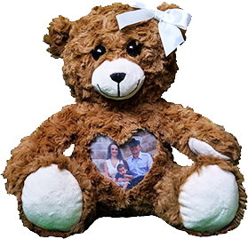 This is an image of a Navy Cuddlebuddys bear.