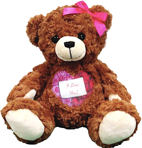 This is our Recordable Valentine Cuddle buddys bear.