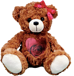 This is an image of a Red Rose Valentine Cuddlebuddys bear.